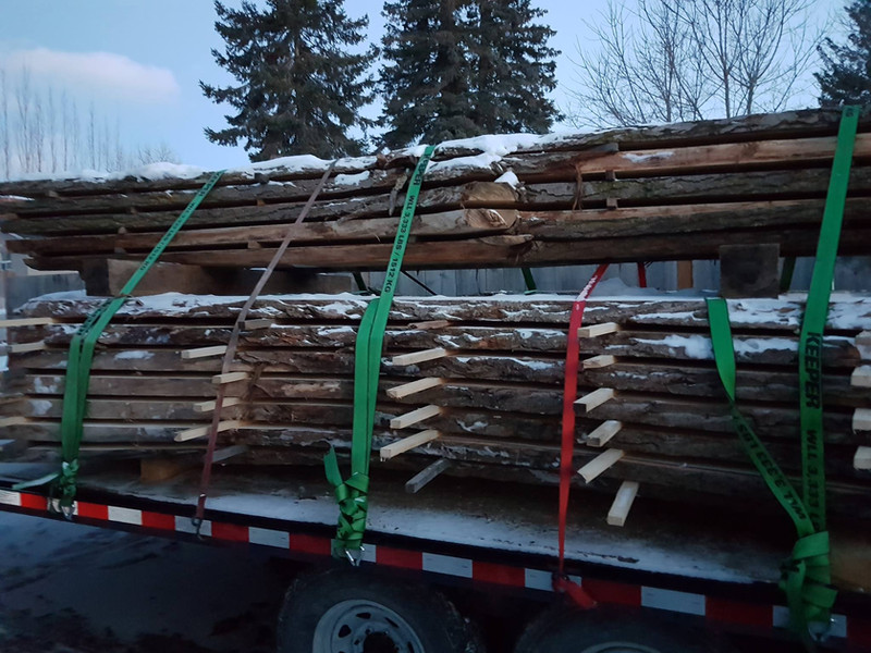 Truckload of trees.jpg