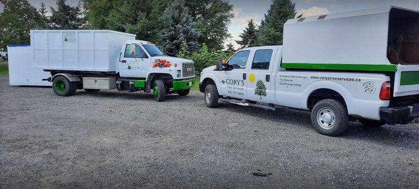 Company Trucks.JPG