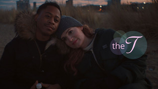 The t webseries