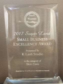 Excellent Business Award