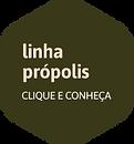 iconesPrancheta 11.png