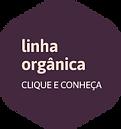 iconesPrancheta 9.png