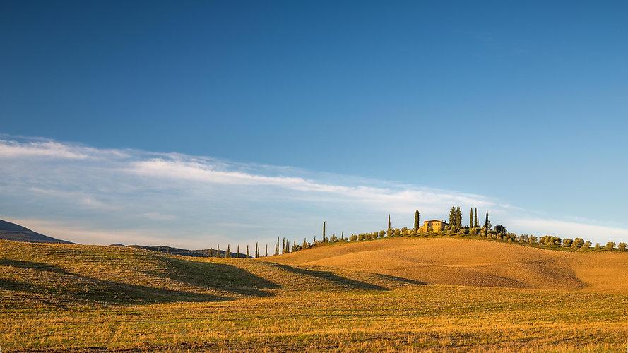 green-grass-field-under-blue-sky-3591318