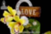 Beautiful gumpaste orchids