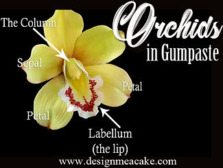 Gumpaste Orchids Tutorial