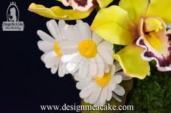 Edible daisies