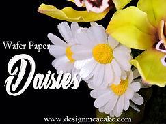 Wafer Paper Daisies.jpg