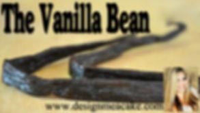 Vanilla Bean Tutorial