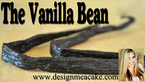 Vanilla Bean Tutorial