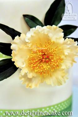 Single Peony Gumpaste Flower