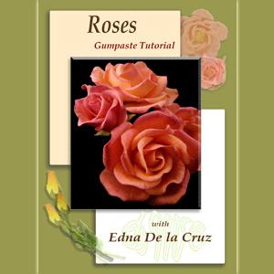 Rose DVD