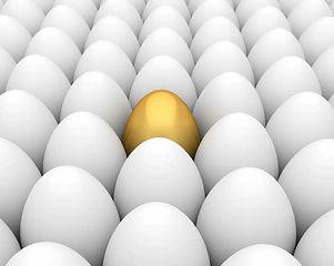 huevos diferenciarse.jpg