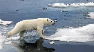 Un curso acelerado sobre el cambio climático