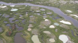Lagunas de deshielo de Permafrost en la Bahía de Hudson, Canadá