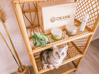 Sustainable Skin With Okana
