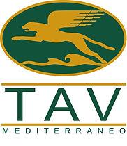 Marchio TAV.jpg