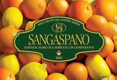 Arance e limoni Sangaspano