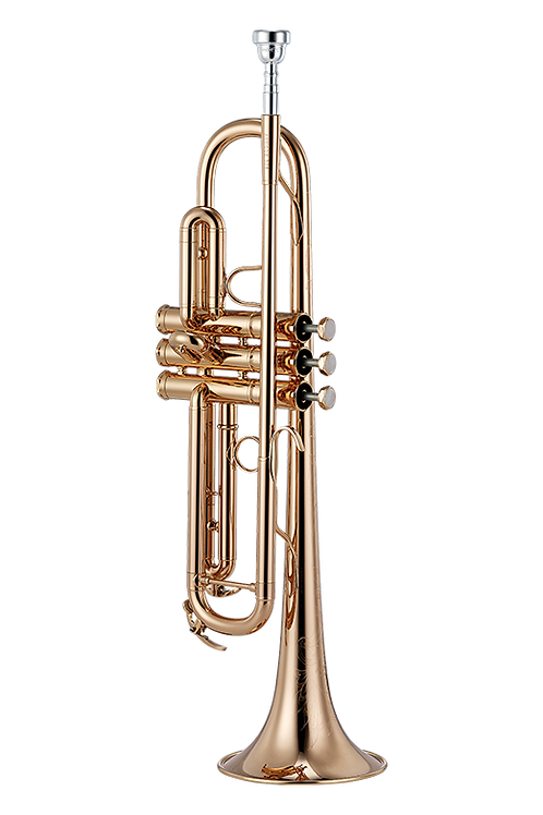 YDS-378G (Gold Plated)