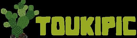 logo_toukipic2.png