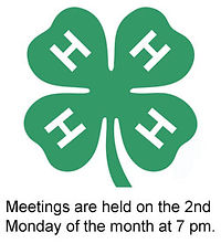 horse 4-H logo and information