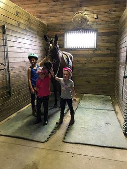 Campers grooming horse