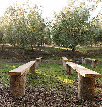 STUMP AND PLANK BENCHES