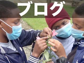 歴史の劇に植物調査!?先生が屋外で行う授業を学ぶ!