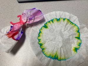 4-6th Grade Virtual Book Discussion: Boy Bites Bug w/ DIY Chromatography Butterfly