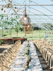 Earth- Blue Bell Farm, 2017 Photo by: Love Tree Studios