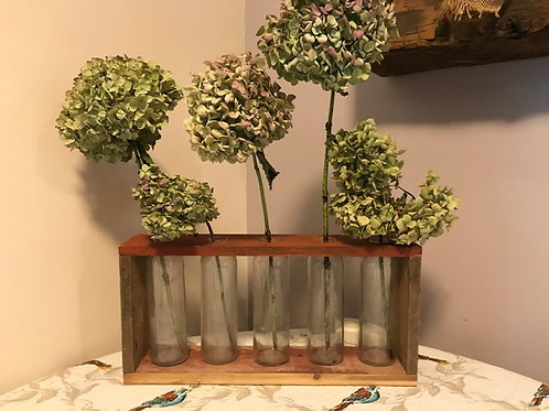 Glass Vase Display
