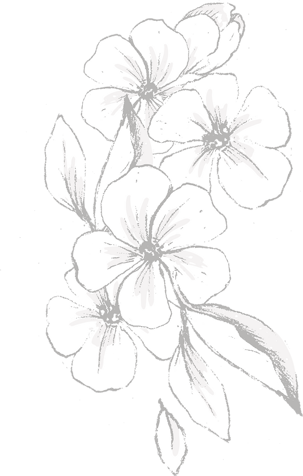 Botanicals_texture-06_edited.png