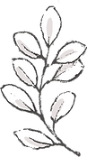 Botanicals_texture-02.png