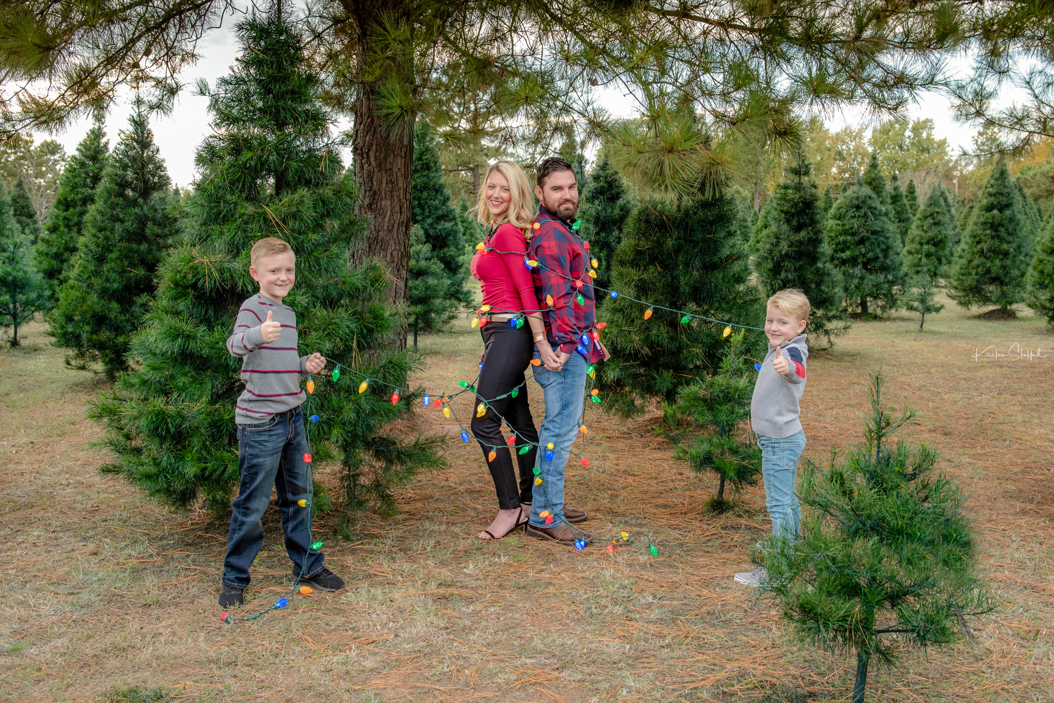 Cross Timbers Christmas Tree Farm Mini's