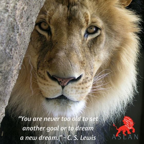 HAPPY 24TH BIRTHDAY ASLAN