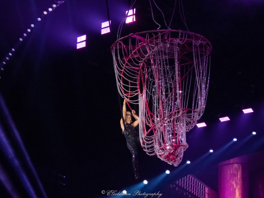 P!nk Comes Out Swinging