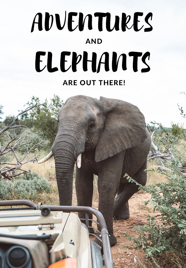 Best travel quotes - Adventures and elephants are out there!