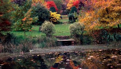 arboretum-sedelle-4-600x450.jpeg