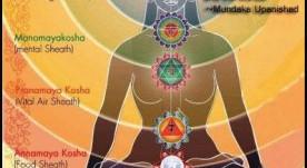 Os cinco koshas – As Cinco Envolturas