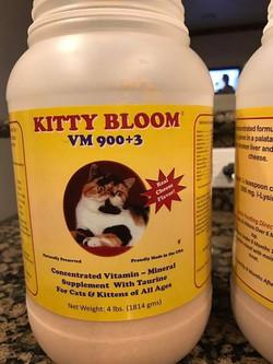 Kitty Bloom