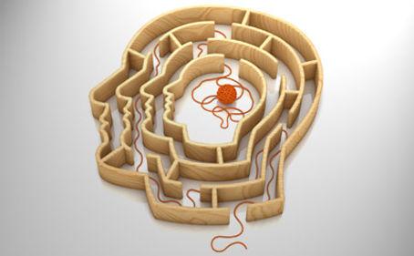 Brainmaze.jpg