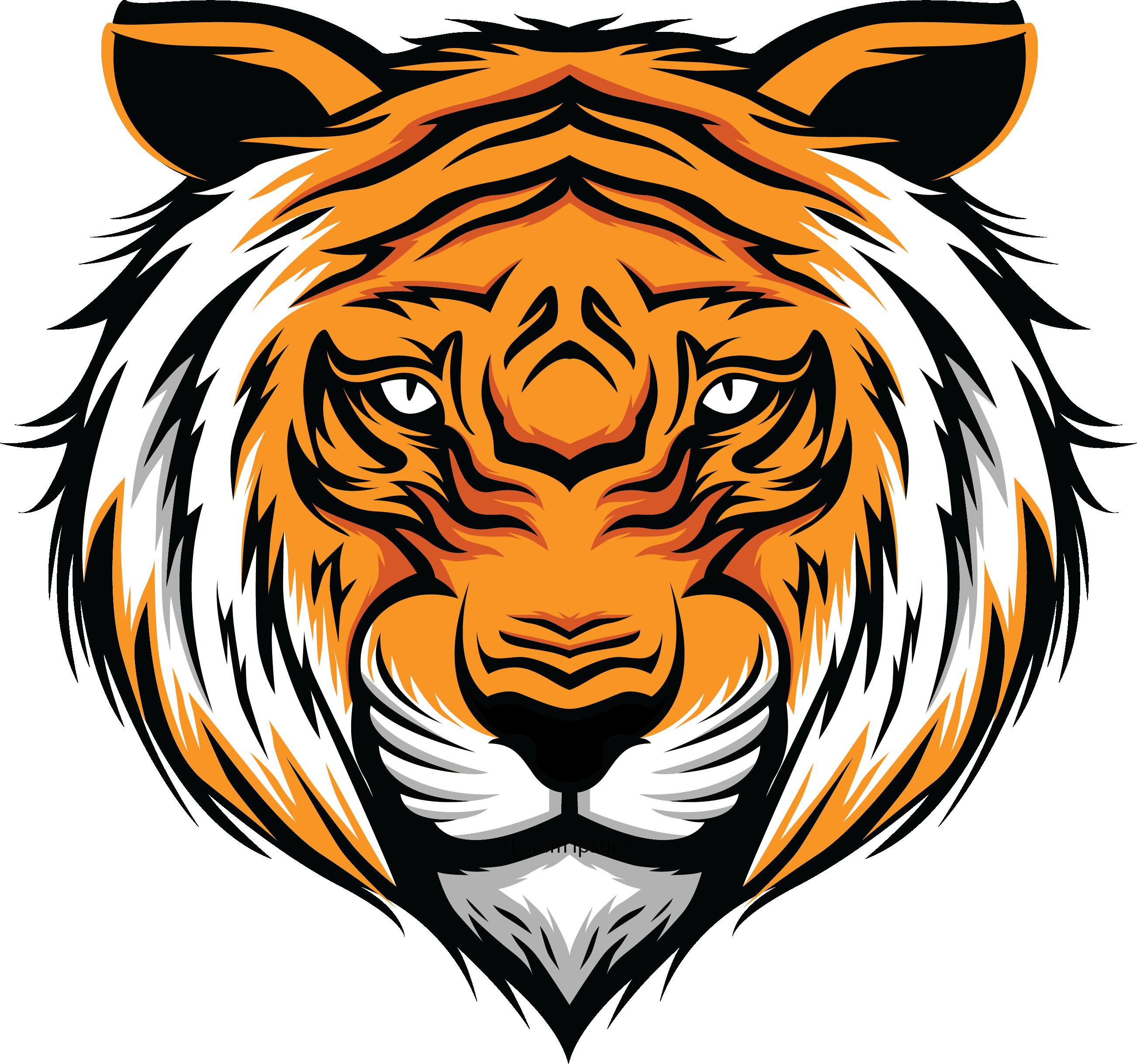 Little Tigers U6