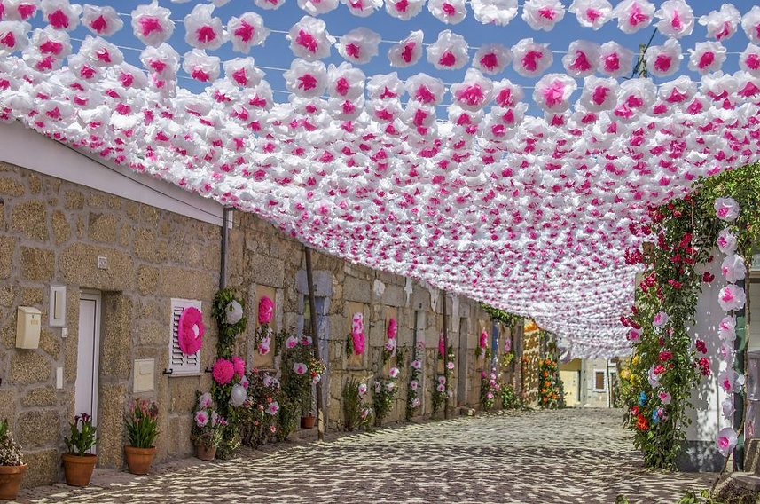 festa-flor-aldeia-sta-margarida-958x635.