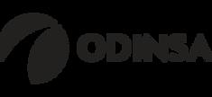 Grupo ODINSA