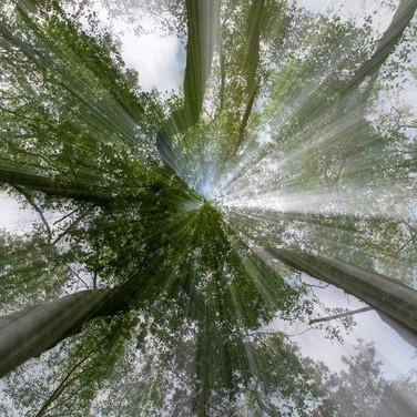 45 Vertical Challenge @ Hadrian Moss.jpg