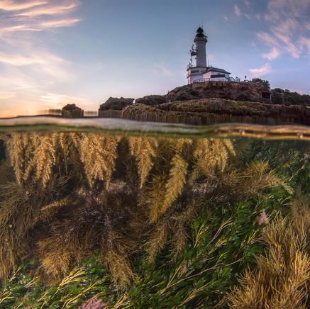 65 Pt Lonsdale Lighthouse.jpg