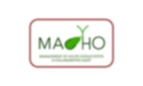 MACHO-wix.png