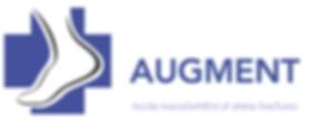 Augment Logo.png