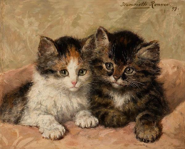 Играющие котята.jpg