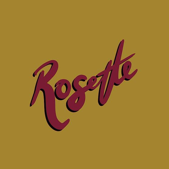 Rosette Landing-04.png