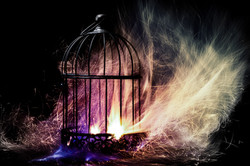 Soul Cage The Escape